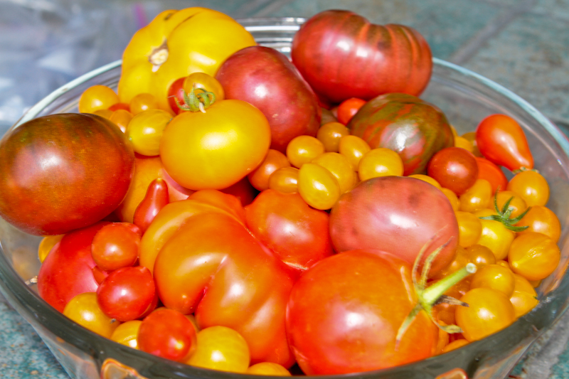 Antioxidants and Survival, Part 1