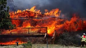 wildfire21