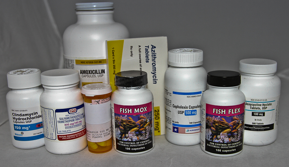 Antibiotics: Both Sides Of The Coin