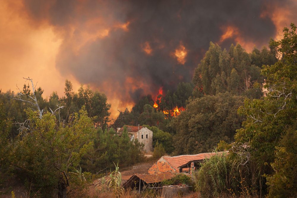 Wildfire Safety: Home Ignition Zones
