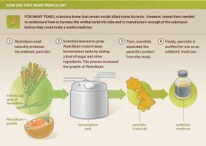 NIH penicillin process