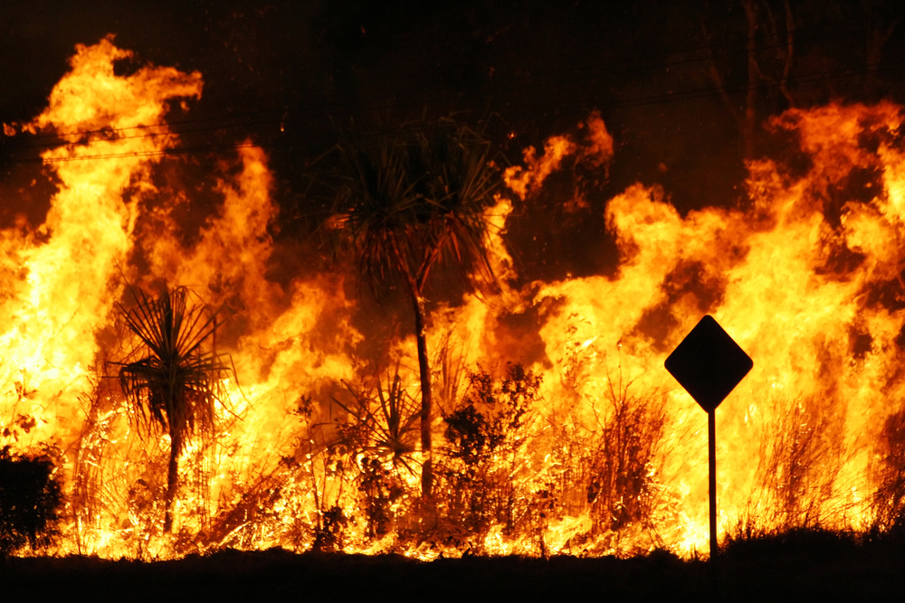 Could You Protect Your Home/Family in a Wildfire?