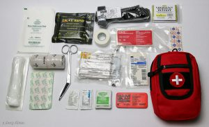 a small first aid kit with items shown such as a tourniquet, gauze, mini compression dressings, ace, scissors and more