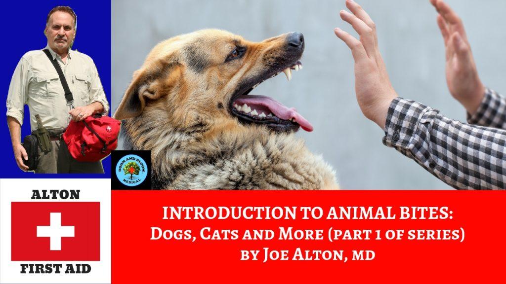Video: Animal Bites, Part 1